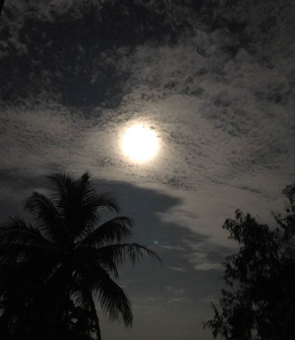 Full Moon nights at Cabo Velas, Guanacaste!