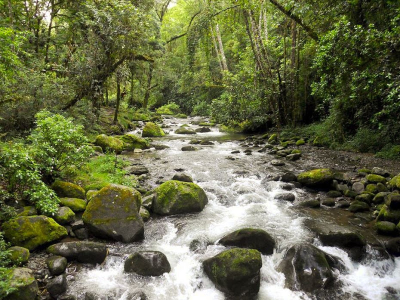 Savegre River May be Costa Rica's Next UNESCO Biosphere Reserve