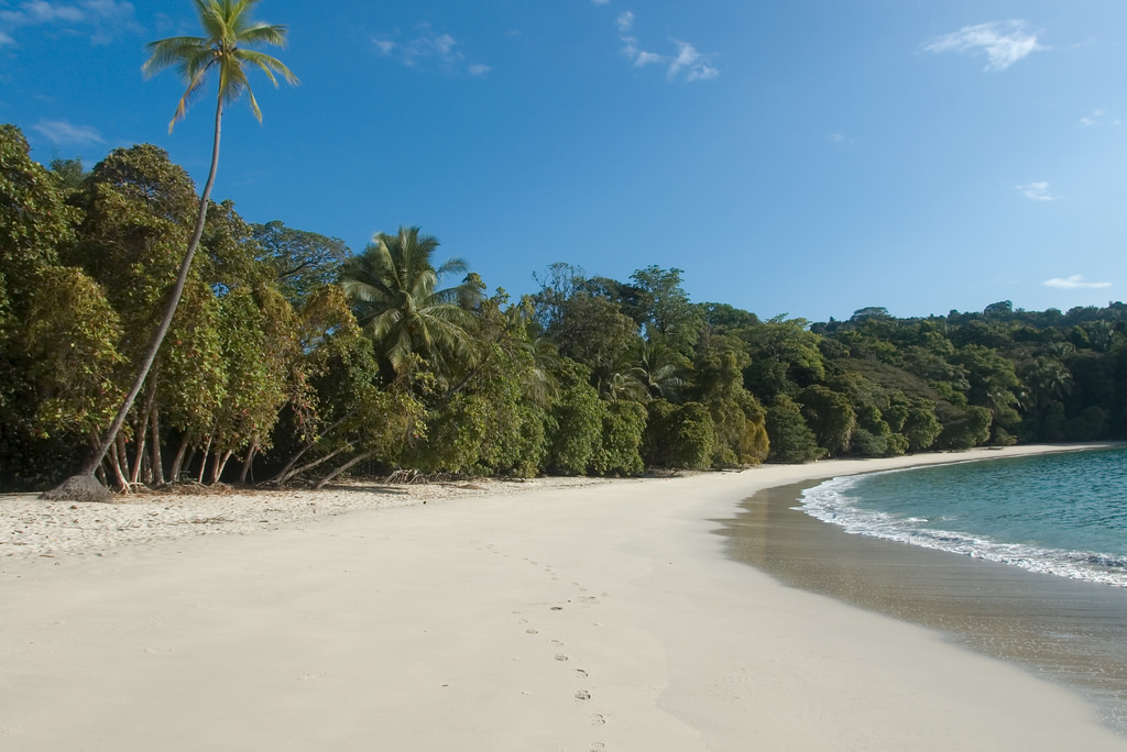A Complete Guide to Manuel Antonio