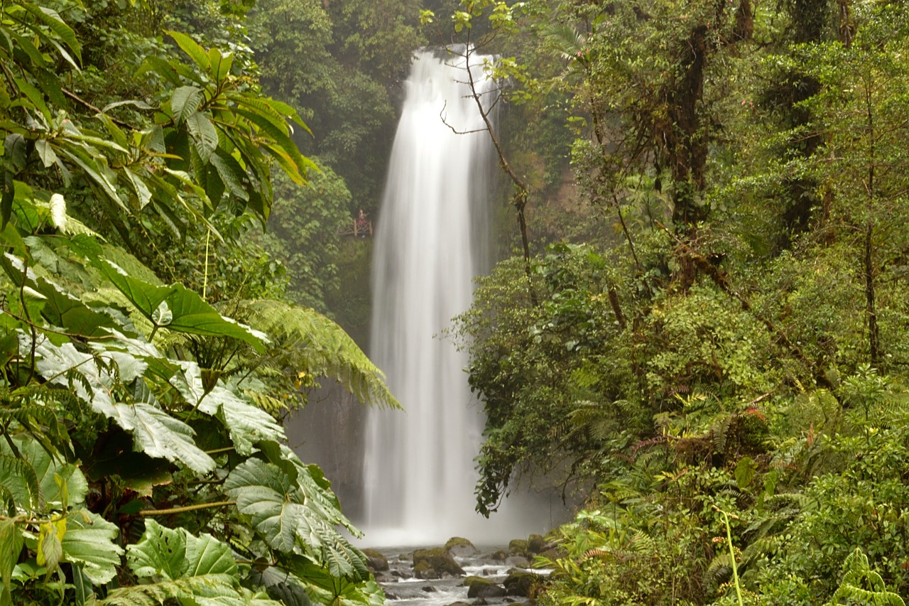 Wild & Nature in Costa Rica