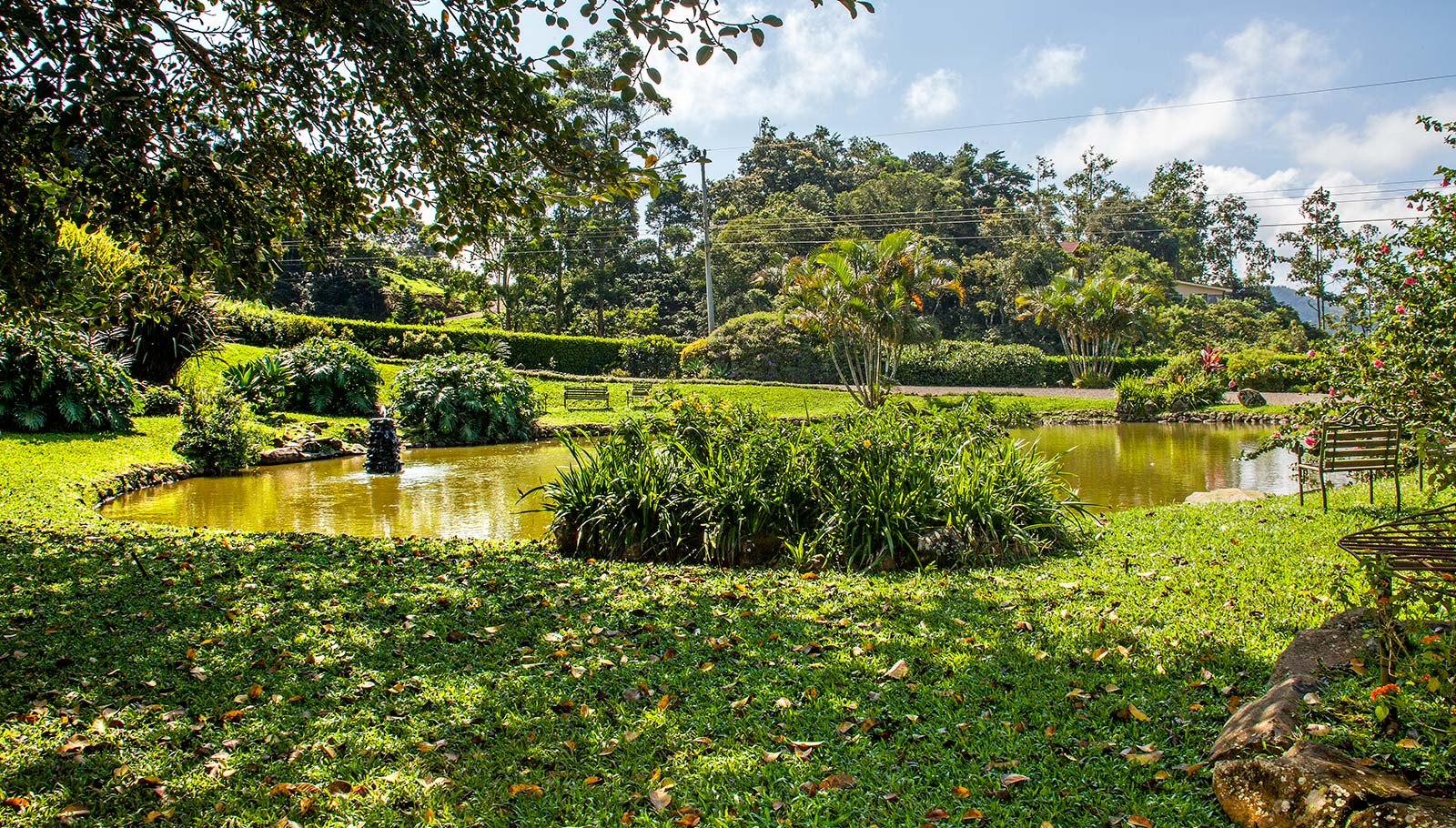 vena view lot for sale in san ramon costa rica, ocean view lot for sale, mountain view lot for sale, buildable lot on gated community in mountains of costa rica, lot with water and electric in costa rica, large lot for sale in central highlands of costa rica.