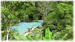 Costa Rica real estate, for sale, Dominical Costa Rica, residential development, investment opportunity, dominical beach, waterfall, jungle