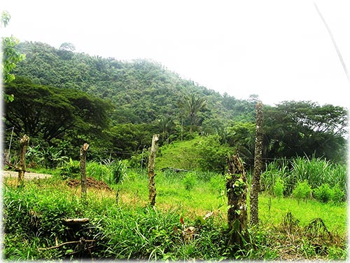 This is a great opportunity to own a large property that combines Costa Rica natural