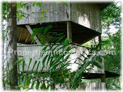 Jungle lands with tree house for sale in pavones costa rica for Tree house for sale costa rica