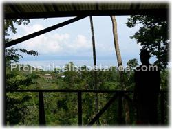 Pavones for sale, Pavones land, Pavones jungle, Puntarenas, Costa Rica, south pacific, tree house, surfing, fishing, hiking, wildlife, point break, river, tree house, watch tower, rain forest, real jungle, 1511