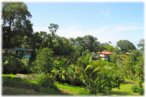 investments, lands, debvelopment opportunity, bahia ballena