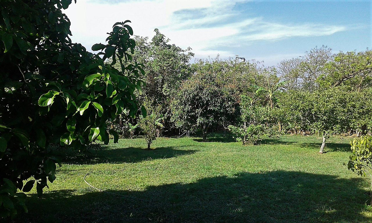 property Heredia, property in Barva