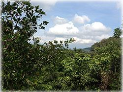 costa rica real estate, for sale, atenas real estate, cosat rica mountain properties, mountain view, mountain property, residential lots, investment opportunity in costa rica,
